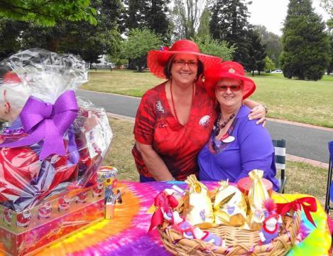 annual-melb-picnic15